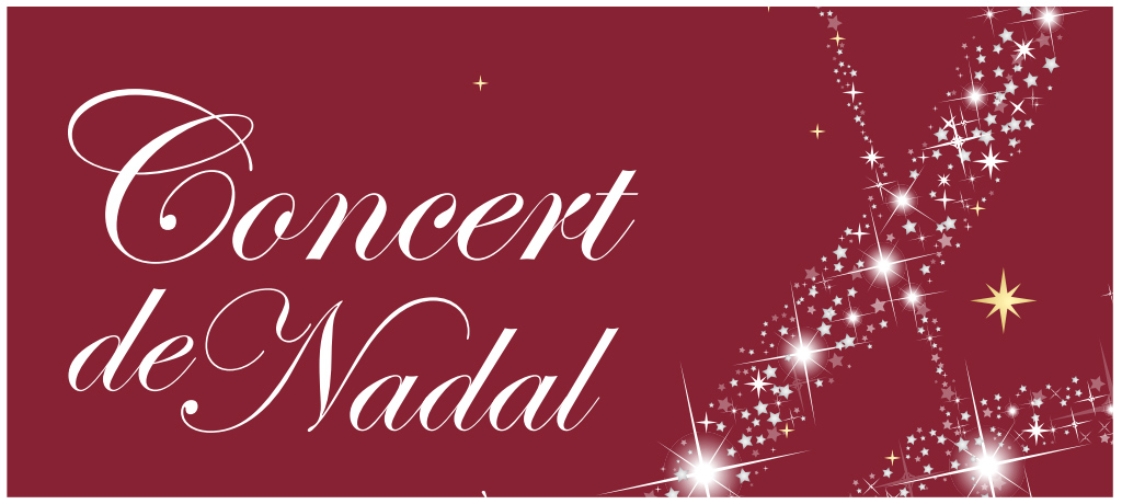 montaje definitivo - concert de nadal